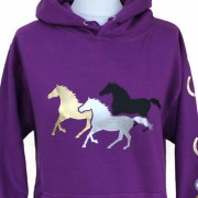 Capaillíní Equestrian Collection - Galloping Horses Hoodie (2)