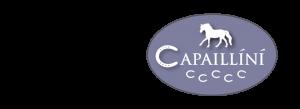 Capaillíní Equestrian Collection