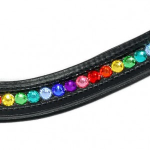 Bling Browbands Rainbow Crystal